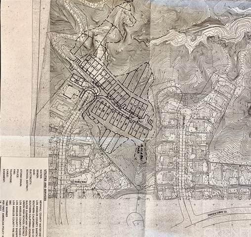 0 Hydrangea, Canyon Country, CA 91387 (#SR20104051) :: Randy Plaice and Associates