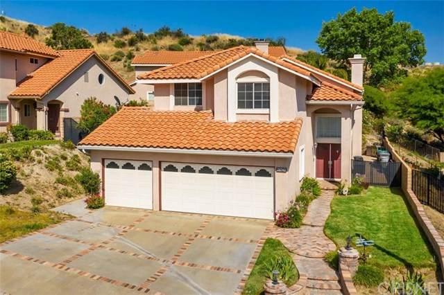 28740 Park Woodland Place, Saugus, CA 91390 (#SR20104380) :: Randy Plaice and Associates