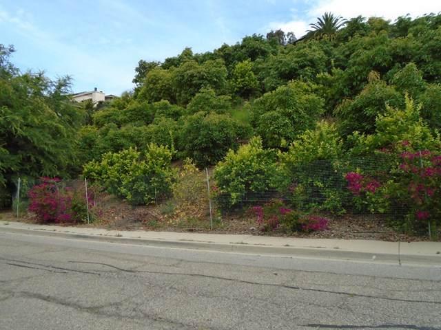 233 View Drive, Santa Paula, CA 93060 (#V0-220005466) :: TruLine Realty
