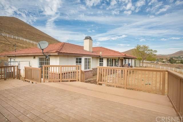2521 Soledad Canyon Road, Acton, CA 93510 (#SR20105866) :: Randy Plaice and Associates
