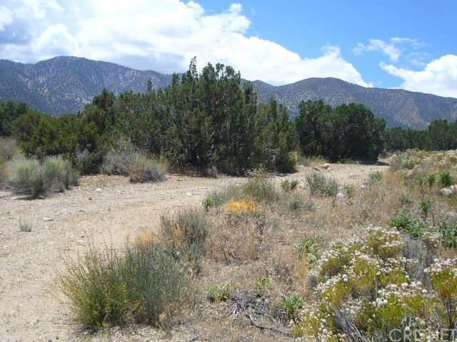 0 Vac/Devil S Punchbowl Rd/Vic 1, Juniper Hills, CA 93543 (#SR20109969) :: Randy Plaice and Associates