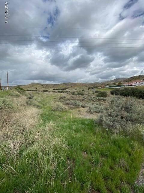 9999 Vasquez Canyon, Canyon Country, CA 91351 (#220005883) :: Randy Plaice and Associates