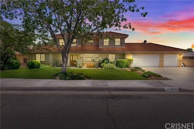 5731 W Avenue M6, Quartz Hill, CA 93536 (#SR20112935) :: Randy Plaice and Associates