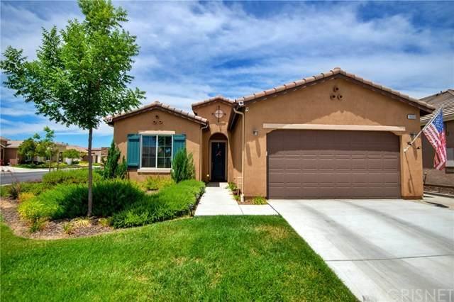 10000 Francois Lane, Bakersfield, CA 93306 (#SR20113372) :: Randy Plaice and Associates