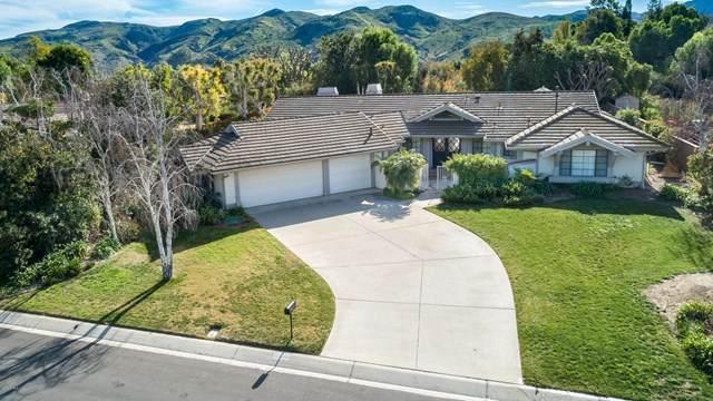 6584 San Onofre Drive, Camarillo, CA 93012 (#220005969) :: Randy Plaice and Associates