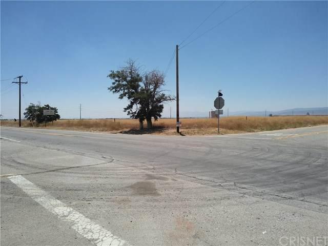 0 Vac/Cor Avenue D/110 Stw, Antelope Acres, CA 93536 (#SR20115198) :: HomeBased Realty