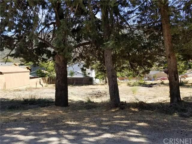 4232 Willow, Frazier Park, CA 93225 (#SR20118595) :: SG Associates