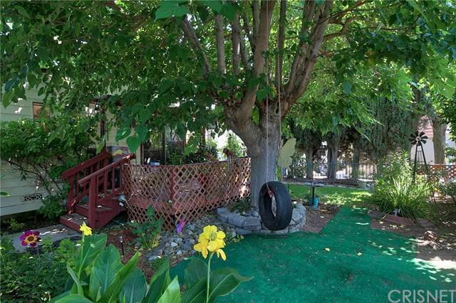 21206 Blue Curl Way #0, Canyon Country, CA 91351 (#SR20119876) :: Randy Plaice and Associates
