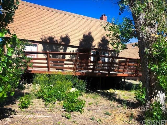 2609 Cedarwood Drive, Pine Mtn Club, CA 93222 (#SR20120052) :: Randy Plaice and Associates