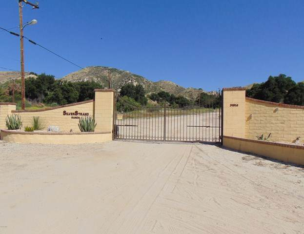 31513 San Martinez Road, Castaic, CA 91384 (#220006398) :: Randy Plaice and Associates