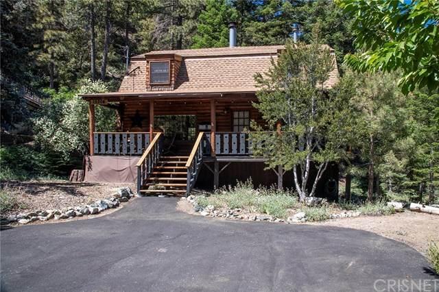 15204 Chestnut Drive, Pine Mtn Club, CA 93222 (#SR20121584) :: Randy Plaice and Associates