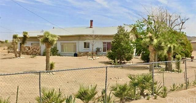 19426 Lodema Road, Apple Valley, CA 92307 (#SR20122078) :: Randy Plaice and Associates