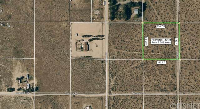 0 45th St W &N Krista St, Rosamond, CA  (#SR20122378) :: Lydia Gable Realty Group
