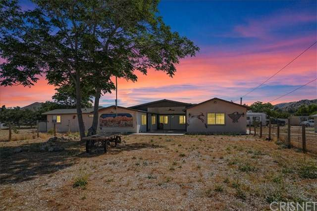 32474 Aliso Canyon Road, Acton, CA 93510 (#SR20122512) :: Randy Plaice and Associates