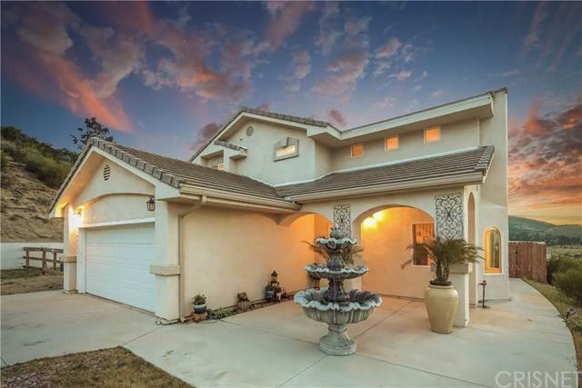 40251 Flintrock Road, Leona Valley, CA 93551 (#SR20114811) :: Randy Plaice and Associates