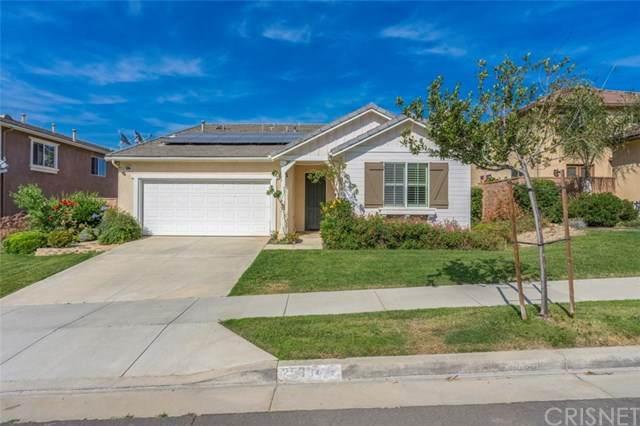 25394 Singleleaf Street, Corona, CA 92883 (#SR20124372) :: Randy Plaice and Associates