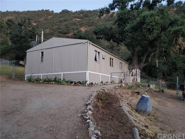 704 Krista Court, Lebec, CA 93243 (#SR20120426) :: Randy Plaice and Associates