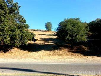 1942 N Topanga Canyon Boulevard, Topanga, CA 90290 (#SR20126654) :: Randy Plaice and Associates