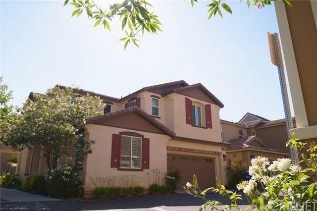 22032 Windham Way, Saugus, CA 91350 (#SR20126016) :: Randy Plaice and Associates
