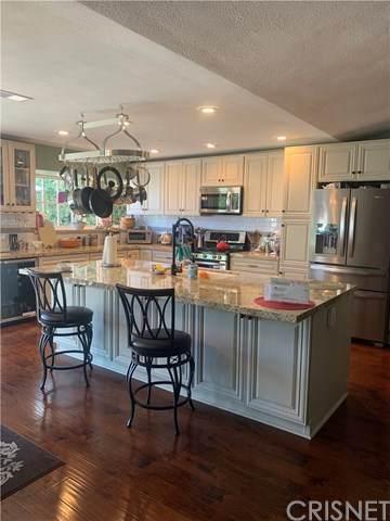 28059 Florence Lane, Canyon Country, CA 91351 (#SR20127388) :: Randy Plaice and Associates