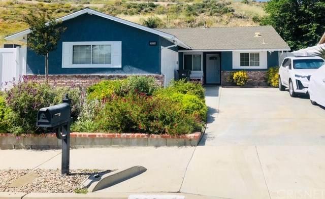 28259 Enderly Street, Canyon Country, CA 91351 (#SR20128612) :: SG Associates