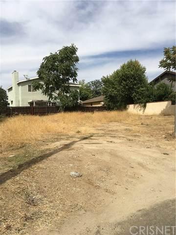 28915 St Lawrence, Val Verde, CA 91354 (#SR20128634) :: Randy Plaice and Associates