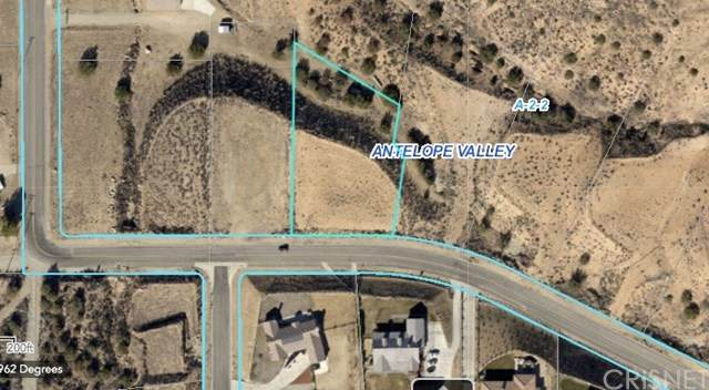 0 Vac/Ave Y8/Vic Lawson Court, Acton, CA 93510 (#SR20129182) :: Randy Plaice and Associates