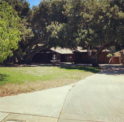 21342 Placerita Canyon Road, Newhall, CA 91321 (#SR20129353) :: HomeBased Realty