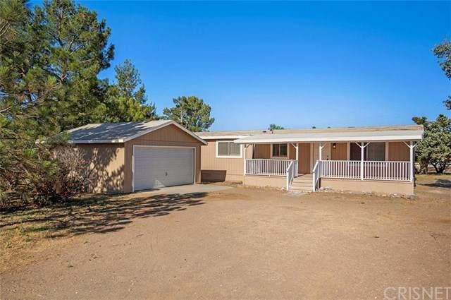 8528 Hierba Road, Agua Dulce, CA 91390 (#SR20128887) :: Randy Plaice and Associates