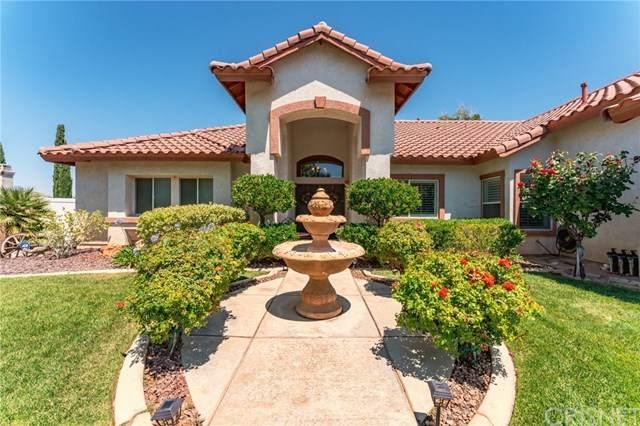 41422 Ventana Drive, Palmdale, CA 93551 (#SR20130770) :: Randy Plaice and Associates