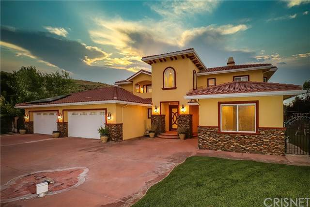 10620 Elizabeth Lake Road, Leona Valley, CA 93551 (#SR20130553) :: SG Associates
