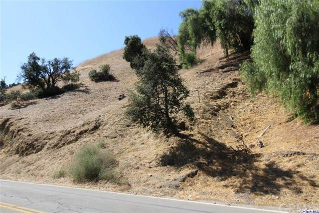 0 W Kagel Canyon Street, Kagel Canyon, CA 91342 (#320002235) :: Randy Plaice and Associates