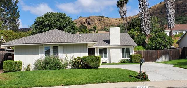 3081 Wild Horse Court N, Thousand Oaks, CA 91360 (#220007071) :: SG Associates