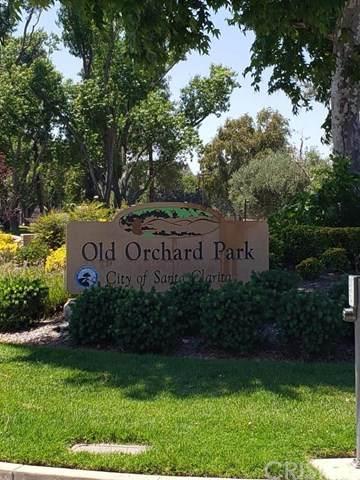 23515 Lyons Avenue #290, Valencia, CA 91355 (#SR20133781) :: HomeBased Realty