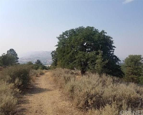 0 Backes Lane, Tehachapi, CA 93561 (#SR20144204) :: HomeBased Realty
