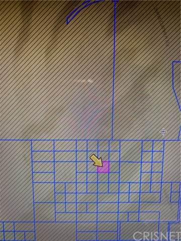 0 0, Pinon Hills, CA 93523 (#SR20146546) :: HomeBased Realty