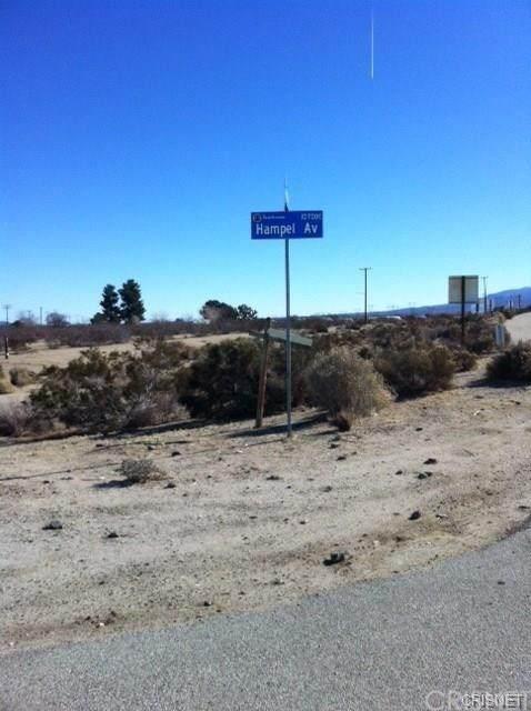 0 Hampel Ave, Littlerock, CA 93543 (#SR20147069) :: Randy Plaice and Associates