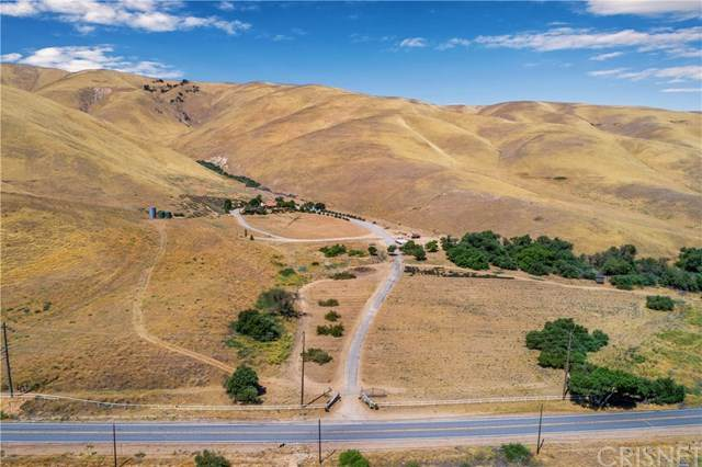 38833 Gorman Post Road, Gorman, CA 93243 (#SR20147370) :: Berkshire Hathaway HomeServices California Properties