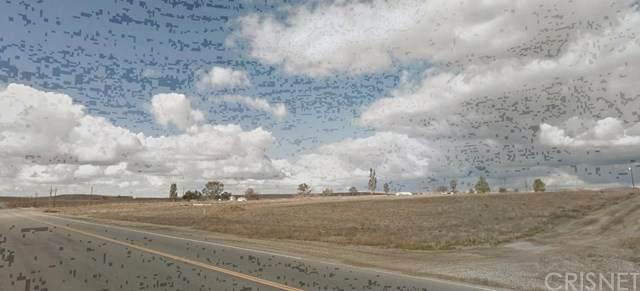9897 Paladino Drive, Bakersfield, CA 93306 (#SR20151473) :: SG Associates