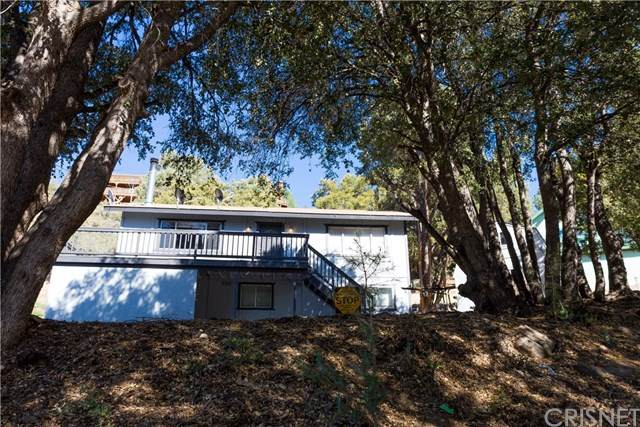 1832 Pilgrim Lane, Pine Mtn Club, CA 93222 (#SR20151662) :: Randy Plaice and Associates