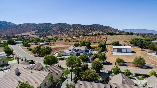 9828 Sweetcap Lane, Agua Dulce, CA 91390 (#SR20153167) :: Randy Plaice and Associates