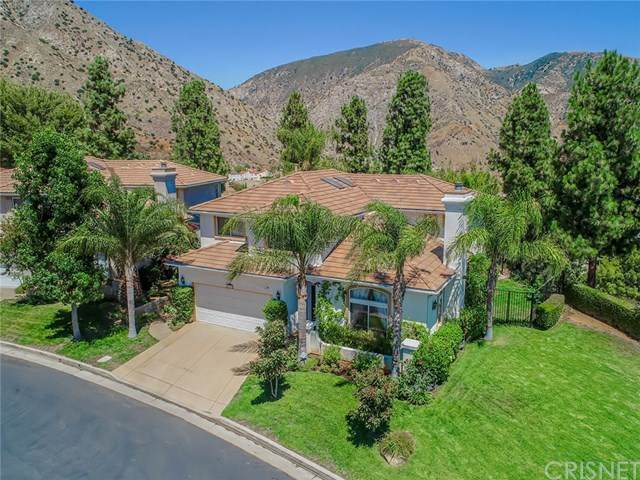 13910 Mountain View Place, Sylmar, CA 91342 (#SR20151595) :: TruLine Realty