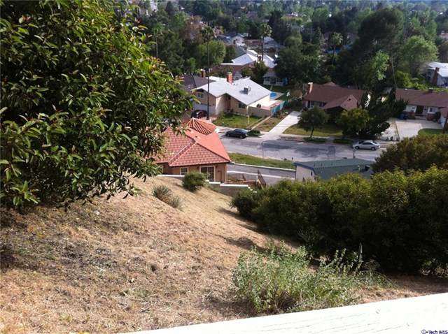 6346 W Sister Elsie Drive, Tujunga, CA 91042 (#320002671) :: Randy Plaice and Associates