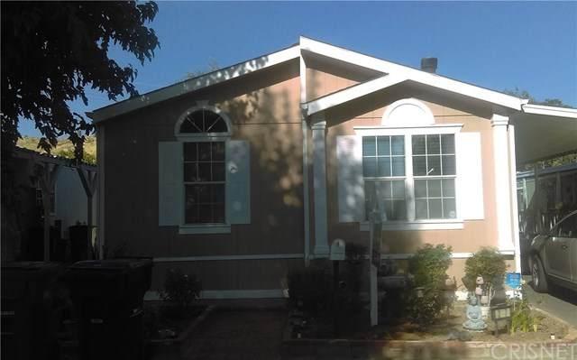 29021 Bouquet Canyon Rd #287, Saugus, CA 91390 (#SR20155809) :: Randy Plaice and Associates