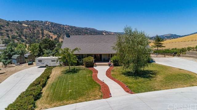 25880 Skyline Drive, Tehachapi, CA 93561 (#SR20156035) :: Randy Plaice and Associates