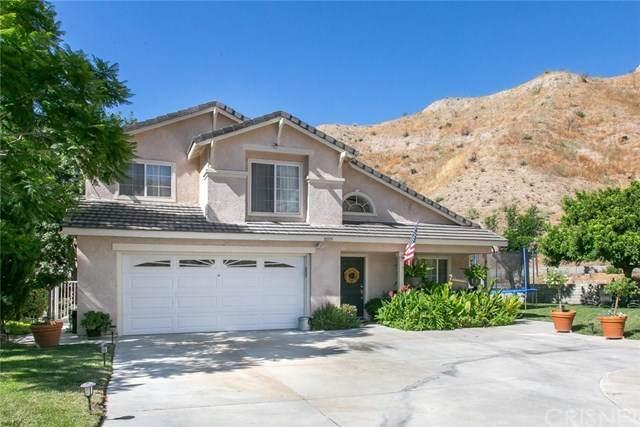 30555 Jasmine Valley Drive, Canyon Country, CA 91387 (#SR20155928) :: Randy Plaice and Associates