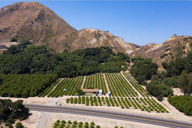 1971 Grimes Canyon Road, Fillmore, CA 93015 (#V0-220008352) :: Angelo Fierro Group | Compass