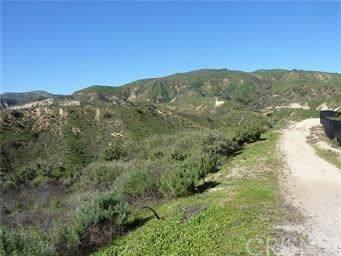 12355 Zelzah, Granada Hills, CA 91344 (#SR20157986) :: TruLine Realty