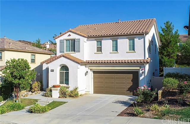17426 Winter Pine Way, Canyon Country, CA 91387 (#SR20157930) :: Randy Plaice and Associates