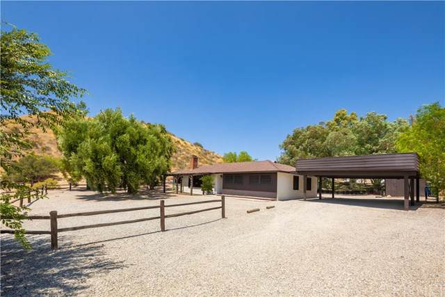 30430 N Brandywine Canyon Road, Canyon Country, CA 91351 (#SR20159659) :: Randy Plaice and Associates